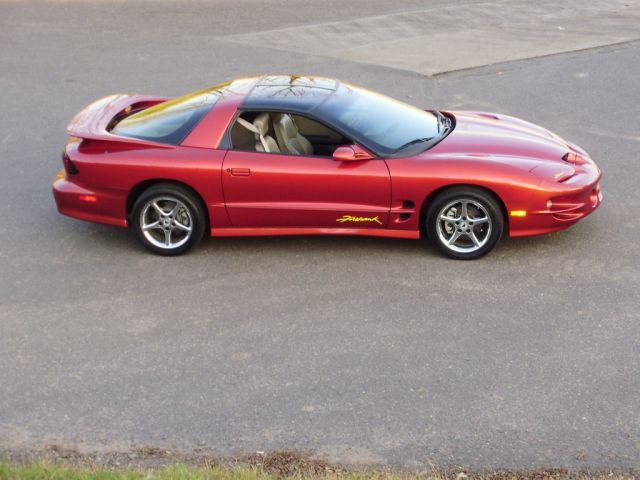 '02 Firehawk (SOM/Tan) - SOLD